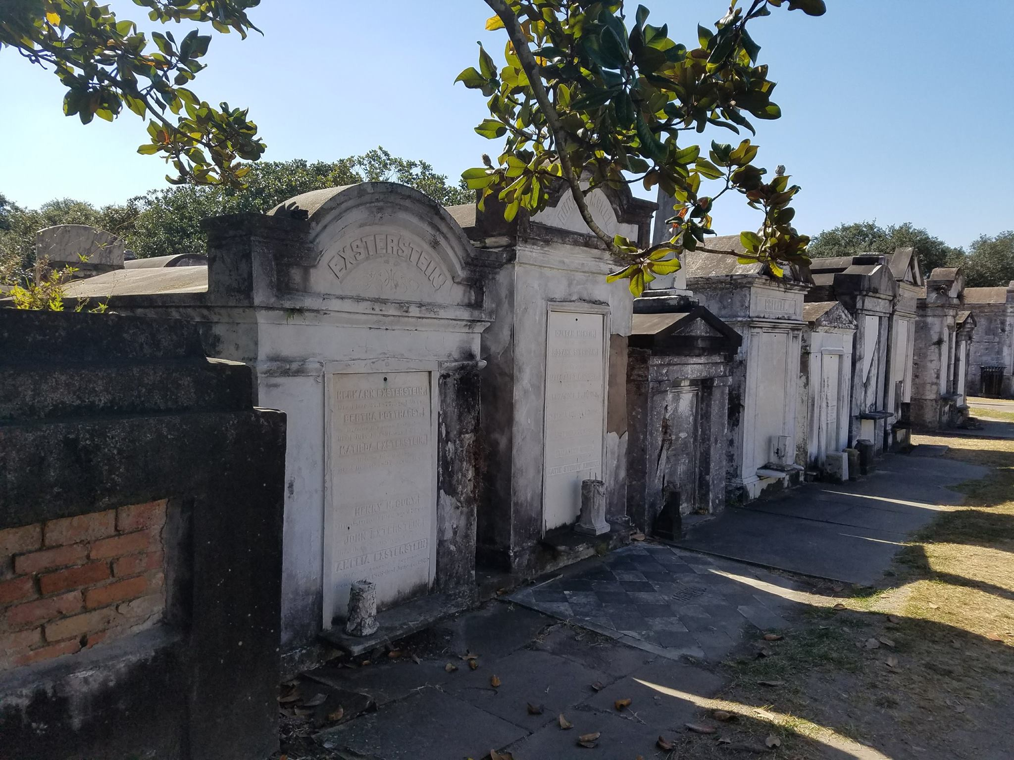 Toms at Lafayette Cemetery. I highly recommend the Two Chicks Walking tour through the Garden District.